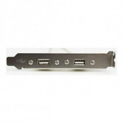 iggual IGG311691 scheda di interfaccia e adattatore USB 2.0 Interno
