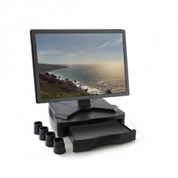 Ewent EW1280 flat panel desk mount Black