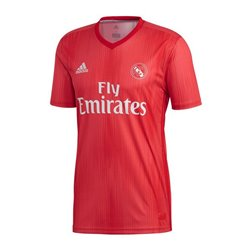Maglia da Calcio a Maniche Corte Uomo Adidas Real Madrid Rosso 18/19 (3ª) L
