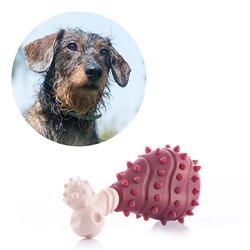 Giocattoli per Cani Meat