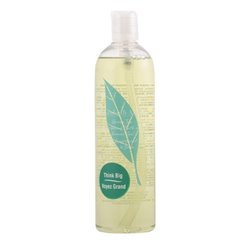 "Gel de duche Green Tea Elizabeth Arden ""500 ml"""