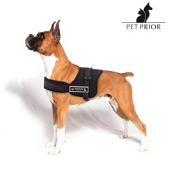 Pet Prior Einstellbares Hundegeschirr M