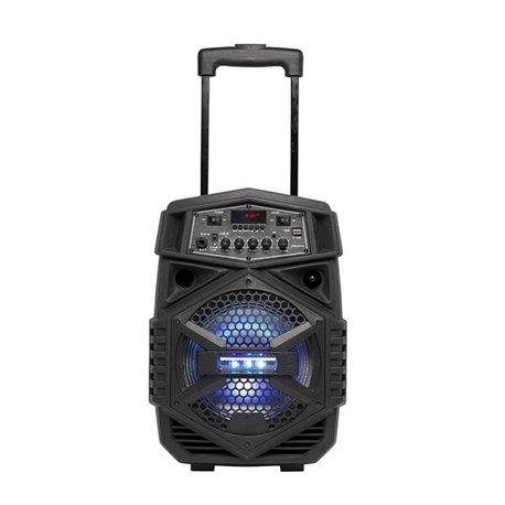 Altoparlante Bluetooh Portatile con Microfono Denver Electronics TSP-110 10W Negro