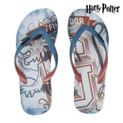 Chanclas de Piscina Harry Potter 73802 41