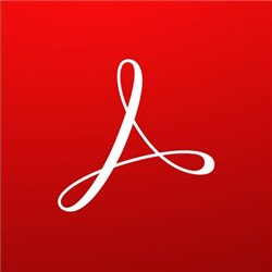 ADOBE ACROBAT PRO 2020 WINDOWS/MAC ITALIANO 1UTENTE PERPETUA