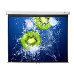 """Optoma DS-3120PMG+ pantalla de proyección 3,05 m (120"""") 4:3"""